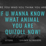 ARE YOU WHO YOU THINK YOU ARE? IF U WANNA KNOW WHAT ANIMAL YOU ARE QUIZOLL NOW!
