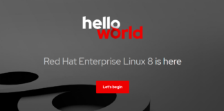 RED HAT: RHEL 8 Appears with Appstreams and Basic Image for All