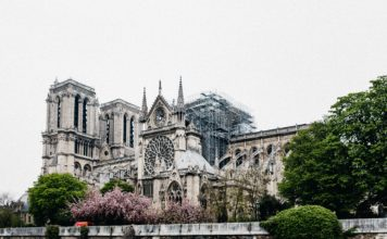 France Tweaks: Reconstruction of Notre-Dame, Green Light For The Law