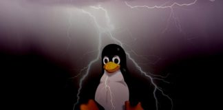 TCP Vulnerability: Netflix Dev found new holes that can paralyze Linux machines over the Internet