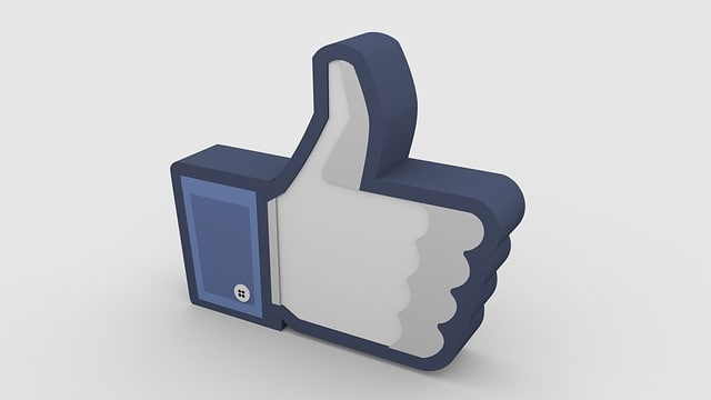 Where is the number of likes on Facebook?