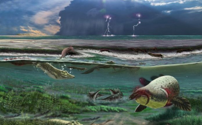 A cartilaginous skeleton and love for an aquatic lifestyle were found in the oldest tetrapods