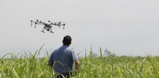 Drone taught to distinguish living people from the dead