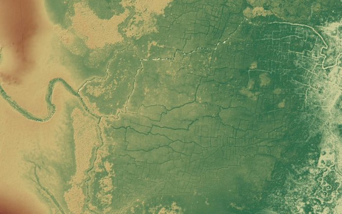 The hidden scars of the power of the Mayan civilization
