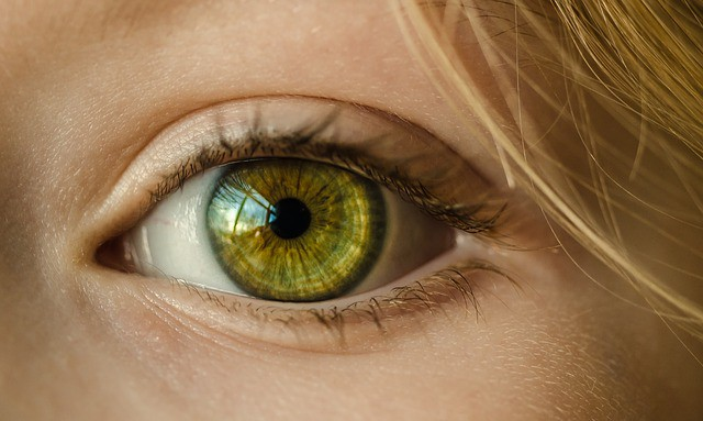 A bright object in the working memory has expanded the pupils