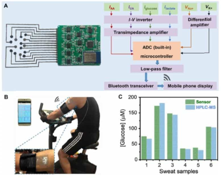 Chinese scientists have created and tested an electrochemical sensor on volunteers to analyze sweat from material based on silk fibres.