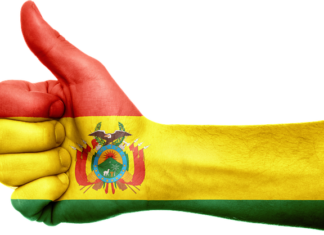 Extraordinary general elections to be held in Bolivia