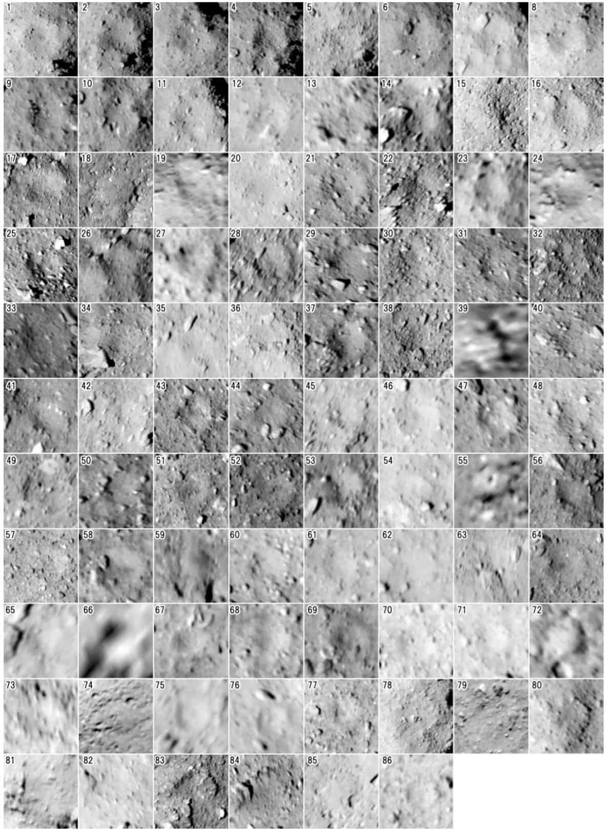 Crater candidates on the asteroid Ryugu