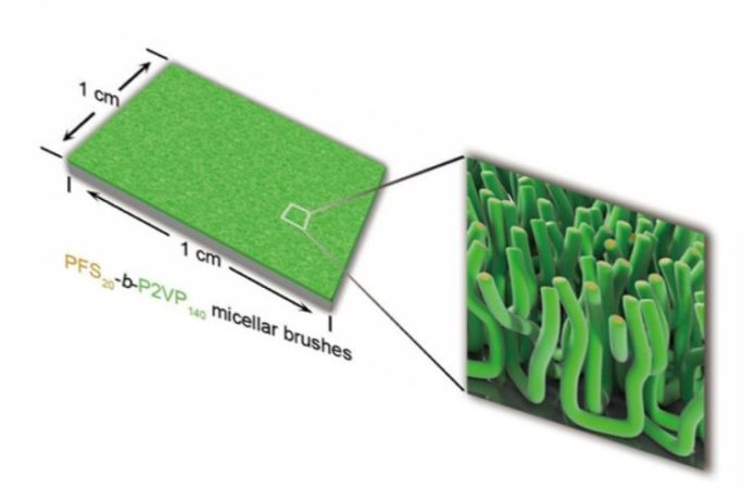 Scientists grew micellar polymer brushes on silicon and graphene