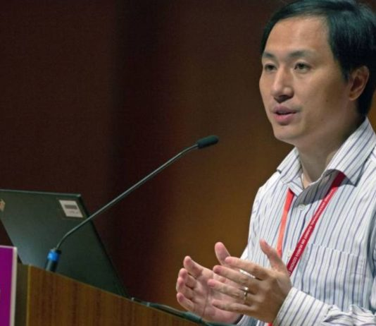 Three years in prison for the Chinese scientist who genetically modified babies