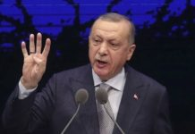 "Bombing in Idlib: Erdogan denounces ""LIES"""