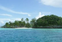 The marine sanctuary of Palau prohibits almost all sun creams