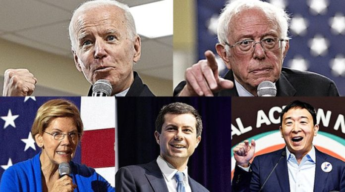 US 2020: The Democratic race for the White House