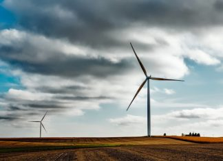 Global terrestrial wind will reach maturity in this decade