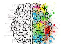 Right or left part of the brain? Herein lies the creativity of the people